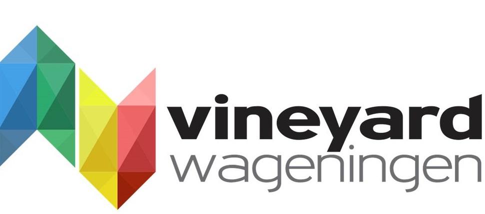 vyw-vinvis